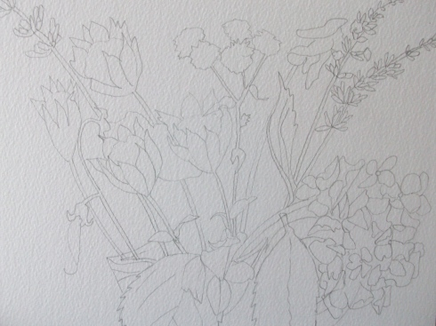 Vanessa's flowers drawing