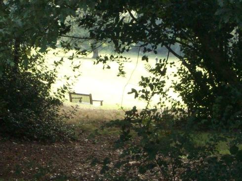 Warley Woods bench