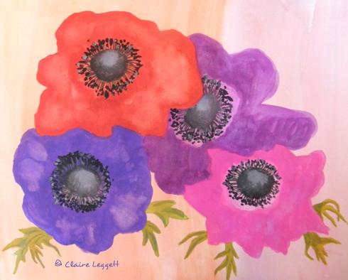 anemones_sktbk