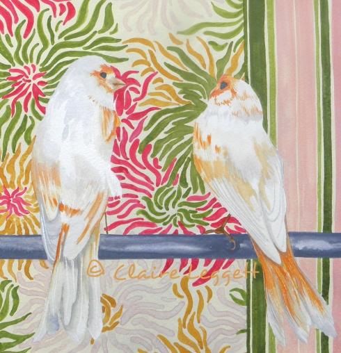 Love Birds © Claire Leggett