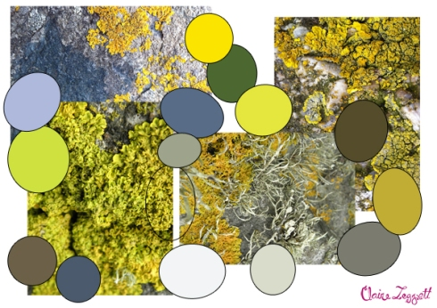 st_ives_colour_board_moss_rocks_A5_72dpi