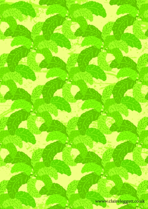 Primula_leaves_72dpi