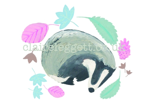 Sleeping Badger blog