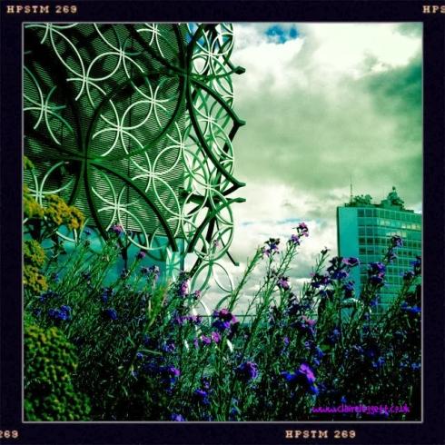 Claire Leggett_Birmingham Library garden corner