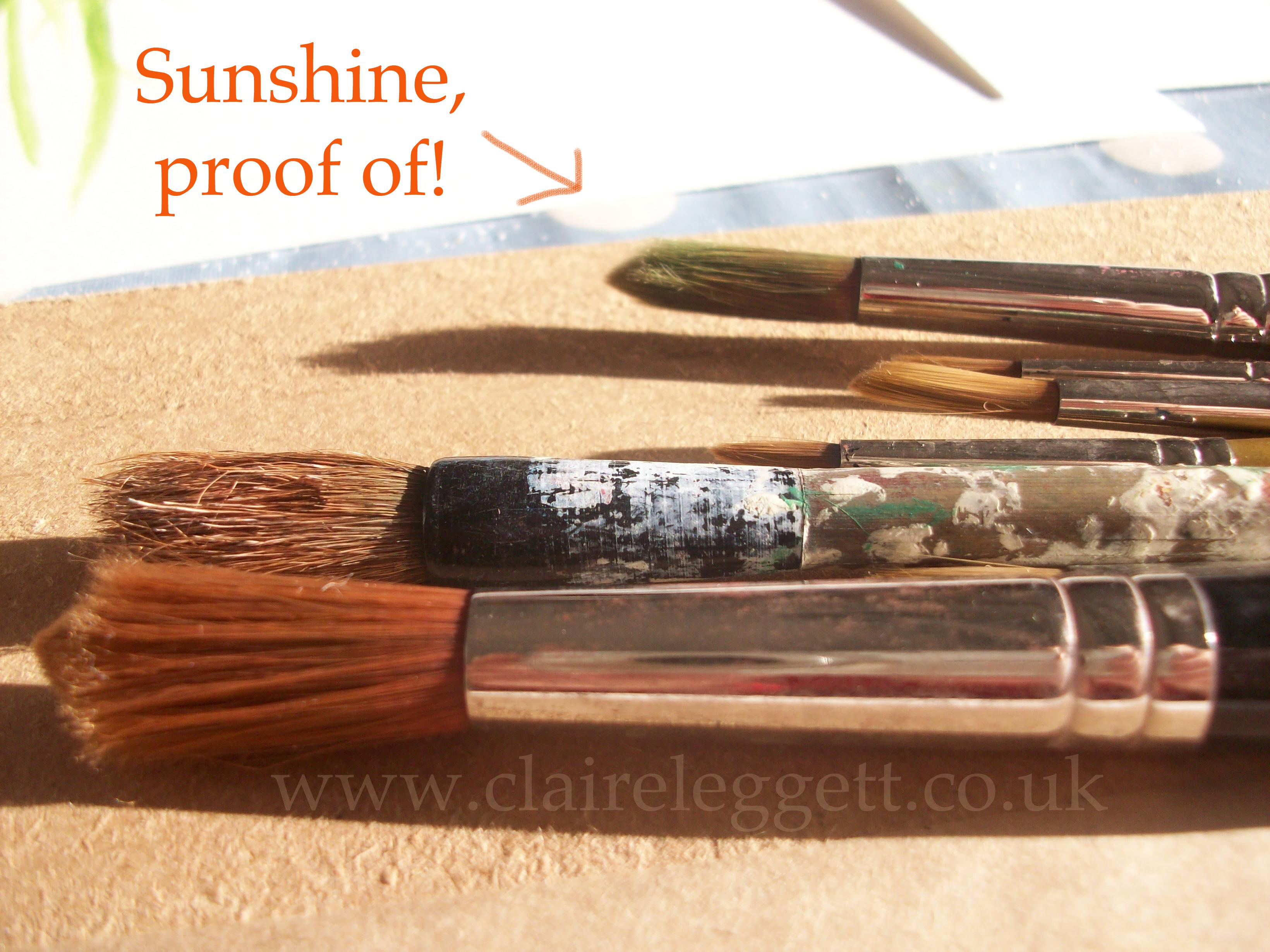 claire_leggett_sunny_paintbrushes