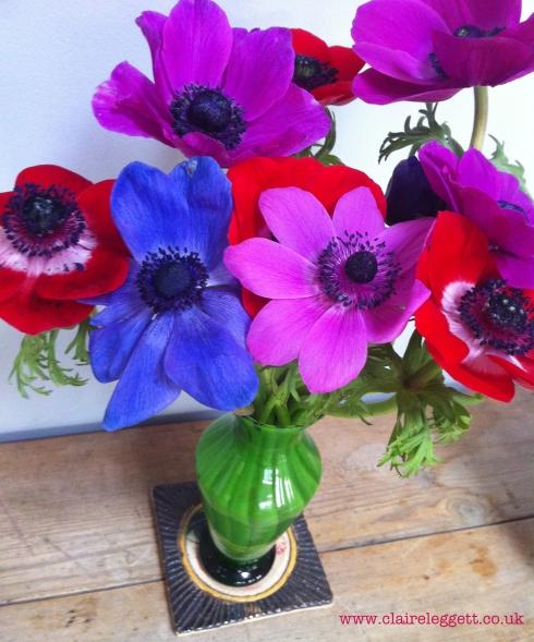 claire_leggett_anemones
