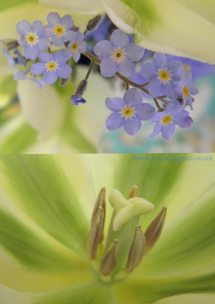 Claire Leggett Spring Green florals