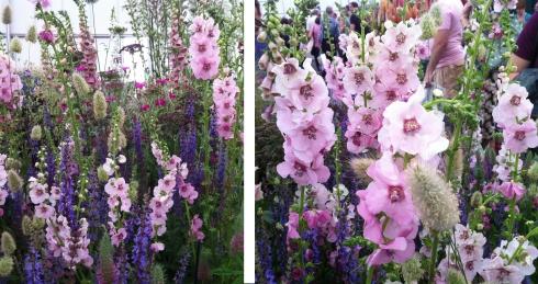 flower fest 2