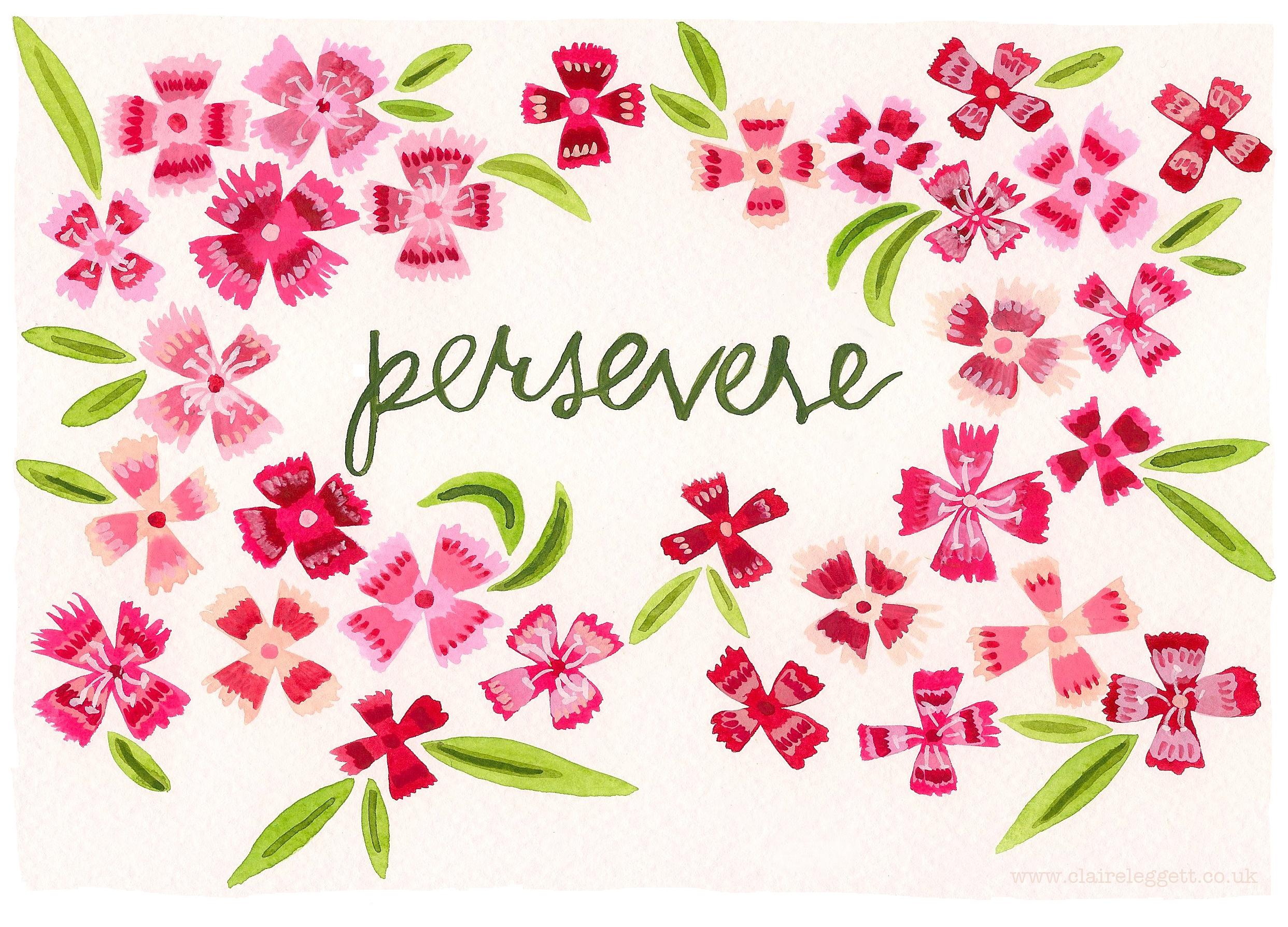 Claire_Leggett_Persevere Pinks