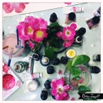 claire_leggett_rose desk