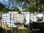 shibiroi washing lineclaire_leggett
