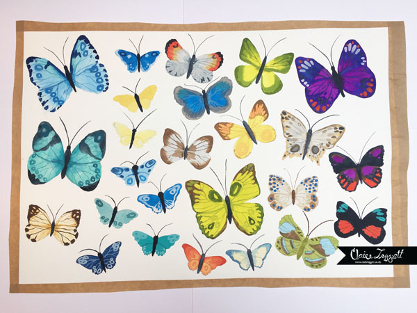 This image has an empty alt attribute; its file name is butterflies-c2a9-claire-leggett-4.jpg